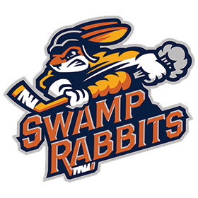Team Chiropractor for the ECHL Swamp Rabbits